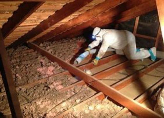 Where to find Insulation Vacuum in Bloomington